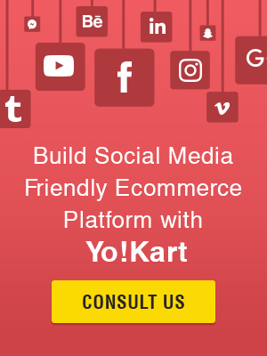Consult for ecommerce platform