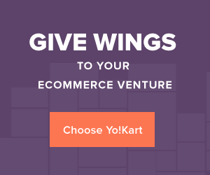 Give wings to your ecommerce venture