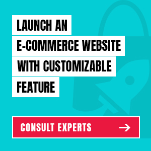 Launch Customizable ecommerce website