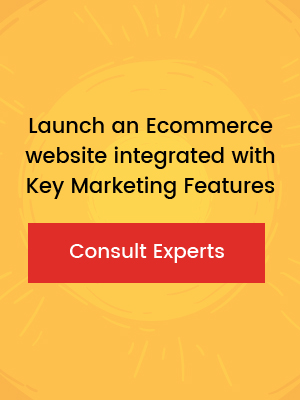 launch an ecommerce website (2)